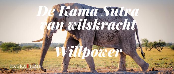 De Kama Sutra van wilskracht – Willpower